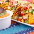 Nachos, vegetables and cheese sauce — Stock Photo #34704957