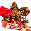 Holly berry flowers, Christmas  tree and decoration — Stock Photo