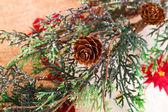 Vánoční strom větev — Stock fotografie