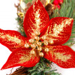 Holly berry flower and Christmas decoration — Stock Photo