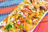 Nachos and vegetables — Stock Photo