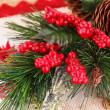 Christmas decoration — Foto de stock #35339921