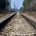 Railway — Stock Photo #12096701