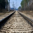 Railway — Stock Photo #12096701