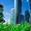 Green grass and skyscrapers — Foto Stock