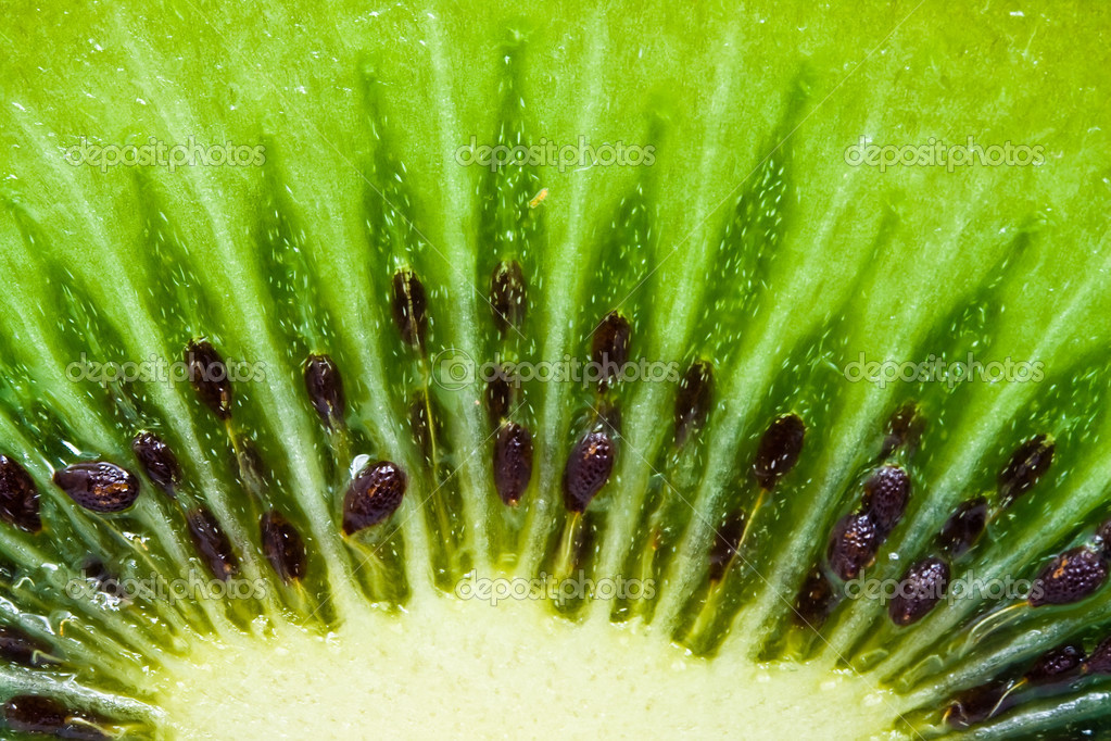 Macro photo of a fresh kiwi — Stock Photo #12110476