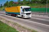 Truck on highway — Stockfoto