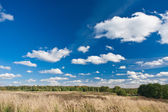 Höstens fältet — Stockfoto