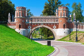 Tsaritsyno in Moscow — Stock Photo