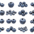 Blueberry set — Stock Photo