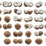 Coconuts — Stock Photo #37379807