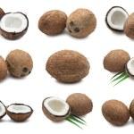 Coconuts — Stock Photo #37380359