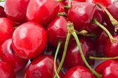 Red cherry — Стоковое фото
