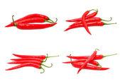 Chili peppers — Stockfoto