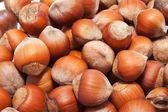 Hazelnuts or filbert — Stock Photo