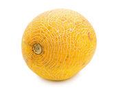 Melone — Stockfoto