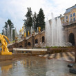 Stock Photo: Petrodvorets Peterhof