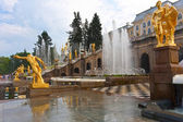 Petrodvorets Peterhof — Stock Photo