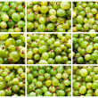 Gooseberries — Stock Photo #39094609