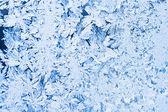 Frost pattern — Stock Photo