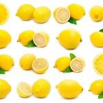 Lemon — Stock Photo #39209739