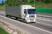 Caminhão na estrada — Fotografia Stock