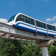 Monorail train — Stock Photo #39533761