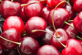 Röda körsbär — Stockfoto