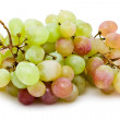 Grapes — Stock Photo #39685349