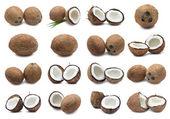 Coconuts — Stockfoto