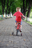 Little boy riding a bike in park — Stock Photo