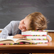 Sleeping boy with books at the desk — Stock Photo #12157880