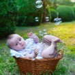 Baby in basket — Stock Photo #12255835