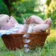Stock Photo: Baby in basket