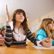 Cute schoolgirl is raising her hand — Stock Photo #22656385