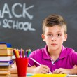 Cute school boy studying in classroom — Stock Photo #30751345