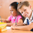 Portrait of cute schoolboy during lesson — Stock Photo
