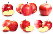 Collage from apples — Stock Photo