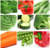 Collage from fresh vegetables — Stock Photo