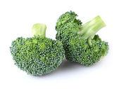 Fresh broccoli — Stock Photo
