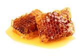 Honeycombs in closeup — Stock Photo
