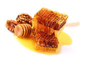 Honeycombs with walnuts — Stock Photo