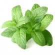 Peppermint in closeup — Stock Photo #14799151