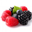 Fresh ripe berry in closeup — Stock Photo #16621851