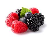 新鲜成熟莓果在特写 — 图库照片