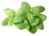 Fresh mint on a white background — Stock Photo