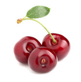 Ripe cherry in closeup — Stock Photo