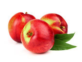 Nectarine with leaves — Stock Photo