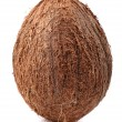 Full coconut — Foto de Stock