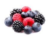 Verse mix berry — Stockfoto